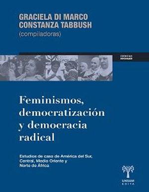 Feminismo, democratización y democracia radical