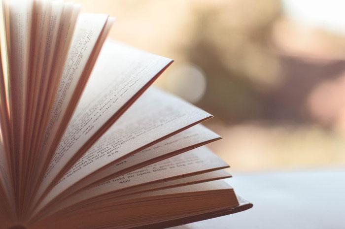 Taller Literario de Enzo Maqueira