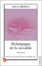 Relámpago de lo invisible